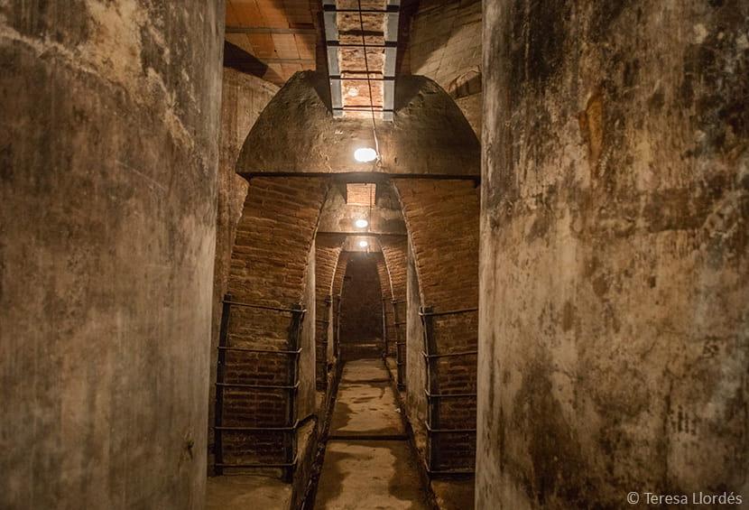 Celler del Sindicat de Vinyaters d'Igualada